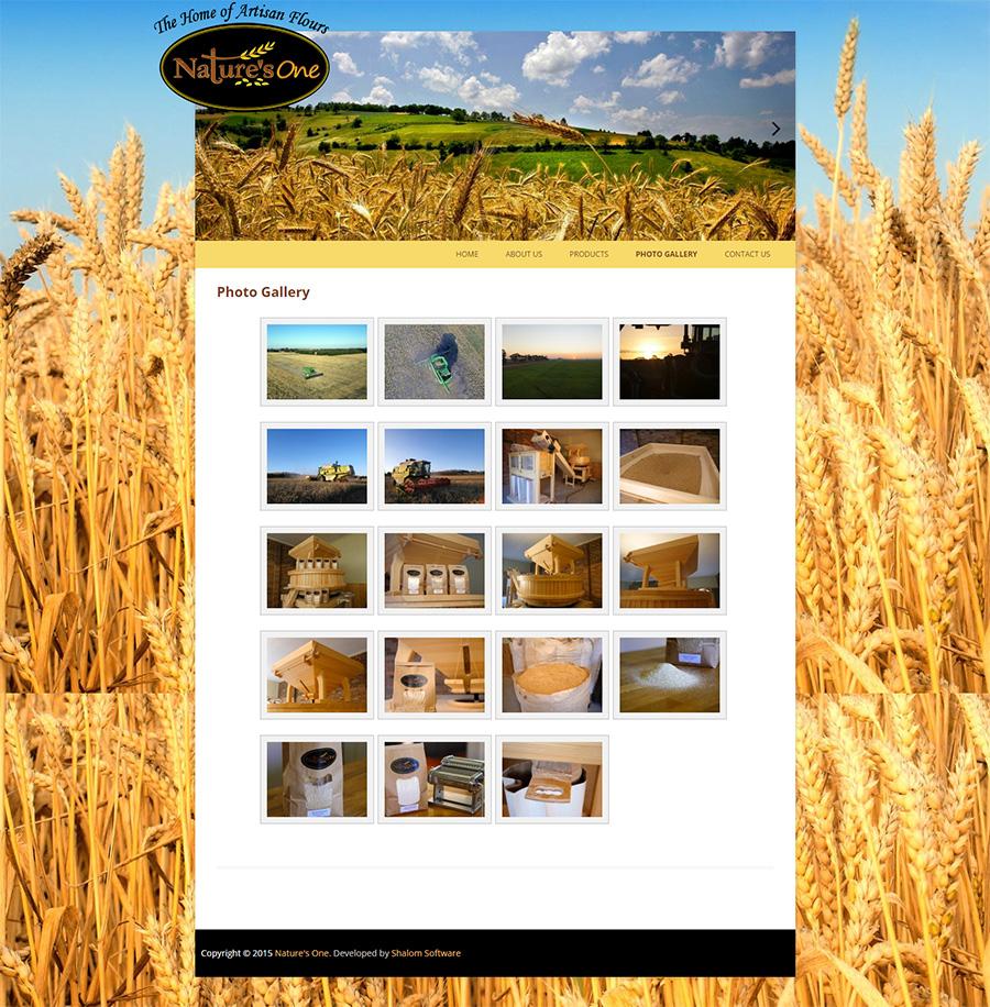 Nature's One Website Screenshot
